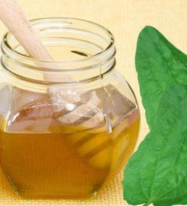 Отвар из подорожника с медом поможет при фарингите.