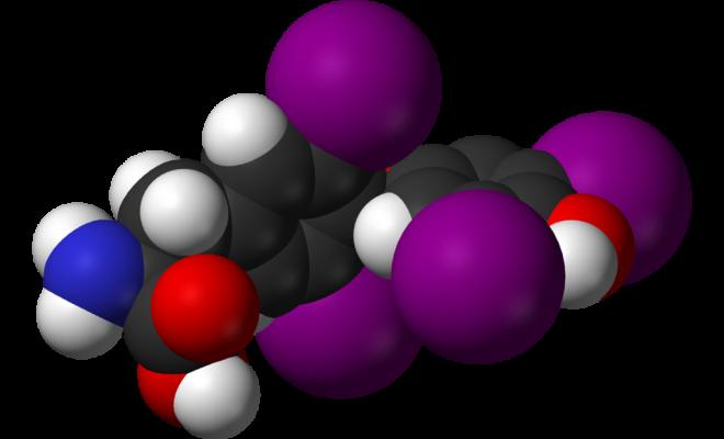 Молекула тироксина.