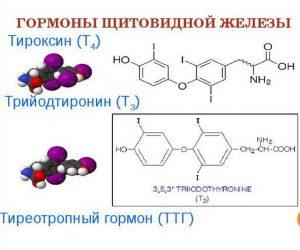 В первую очередь определяют уровень гормонов в крови.