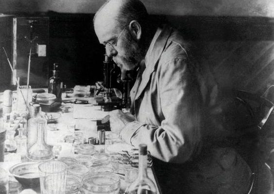 24 марта 1882 г. Роберт Кох нашел возбудителя туберкулеза.